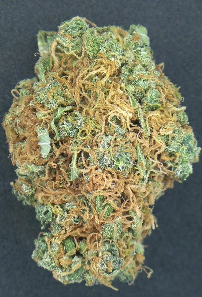 Grapefruit Sativa Strain