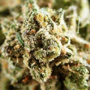 Phantom Cherry Pie Weed