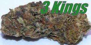 3 Kings Sativa Strain