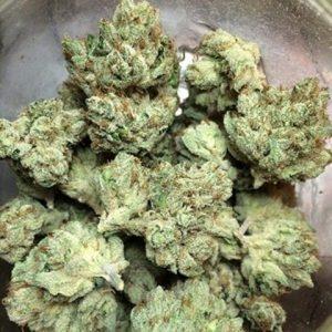 Buy Ace Killer OG Weed