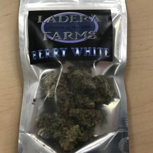 Berry White Indica Strain