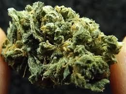 Black Betty Cannabis