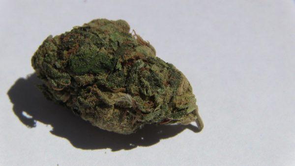 Alaskan Thunder Fuck Marijuana