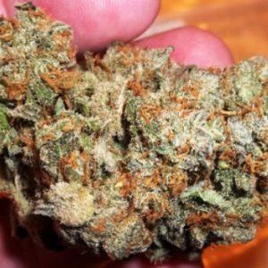 Buy Blueberry Hashplant Weed