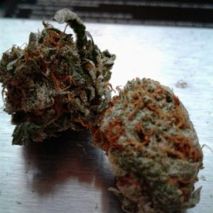 Buy Bubba Kush Marijuana