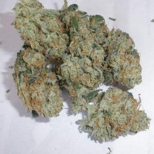 Buy Cannalope Haze Marijuana