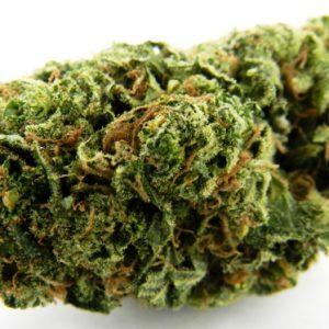 Diesel Thai Marijuana