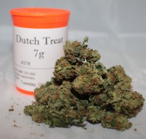 Buy Dutch Treat Strain