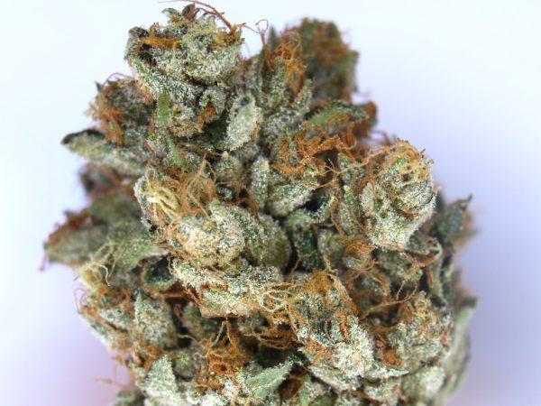 El Diablo OG Marijuana