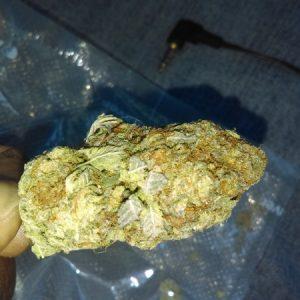 elmer's glue marijuana strain