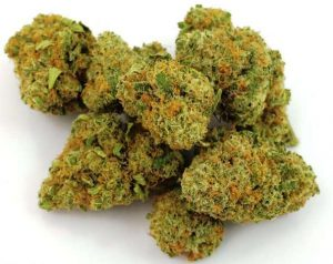 Buy Infinite Euphoria Strain