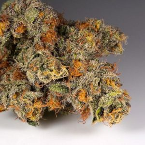 Buy Orange Juice strain