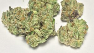 Platinum Girl Scout Cookies Marijuana