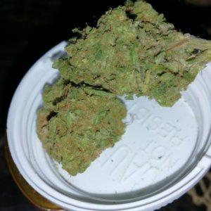 White Widow Weed