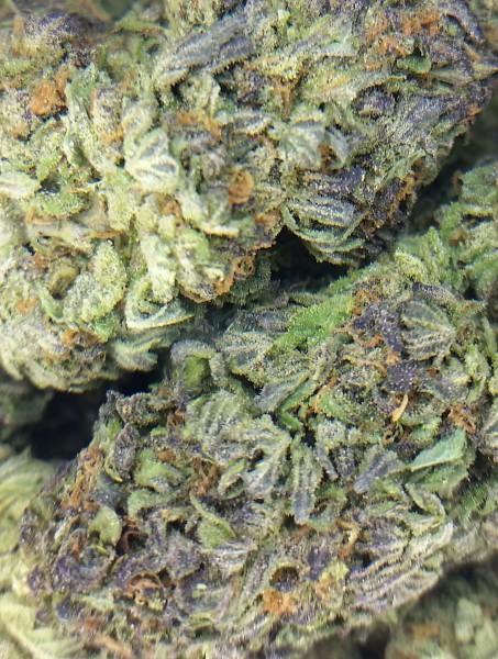 Buy Purple Sour Diesel Weed