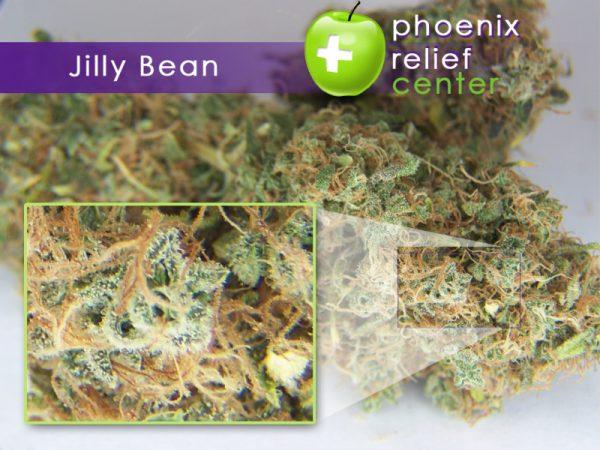 Buy Jilly Bean Weed