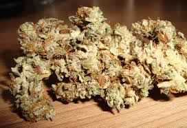 Ortega Indica Marijuana Strain