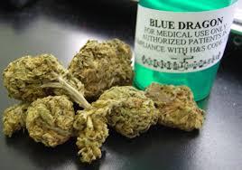 Blue Dragon Strain