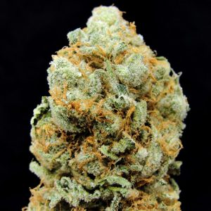 Honey Bananas Marijuana Strain