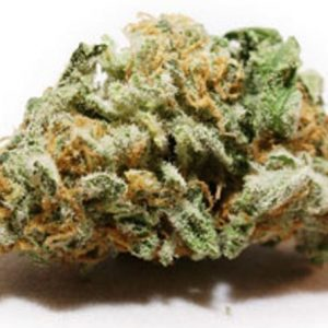 Magnum PI Marijuana Strain
