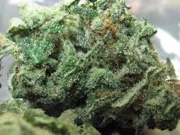 Purple Heart Marijuana Strain