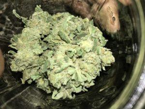Buy SFV OG Marijuana Strain