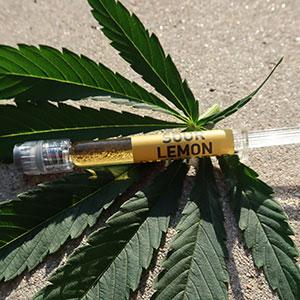 Sour Lemon CO2 Extract