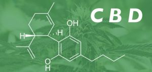 Cannabis oil with the main ingredient CBD